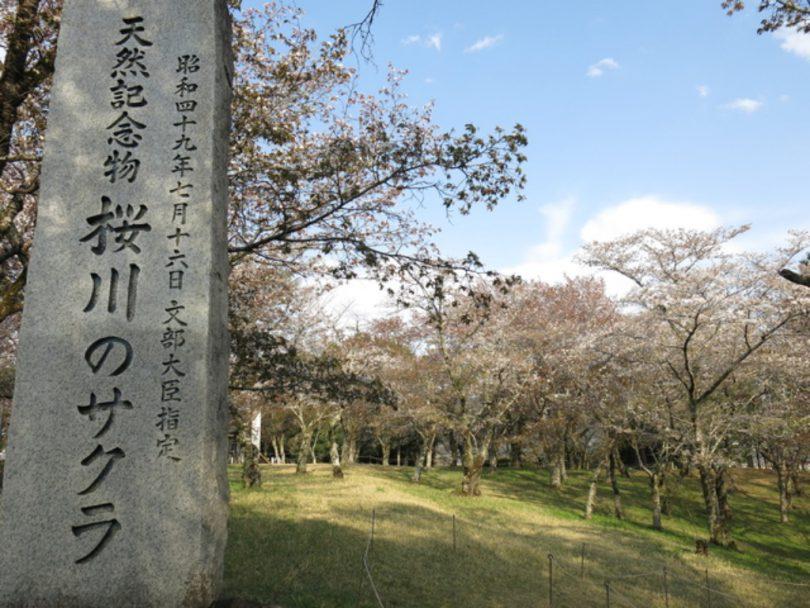 磯部稲村神社