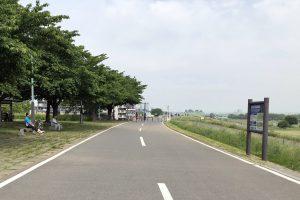 江戸川左岸