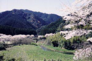 高川ダム公園