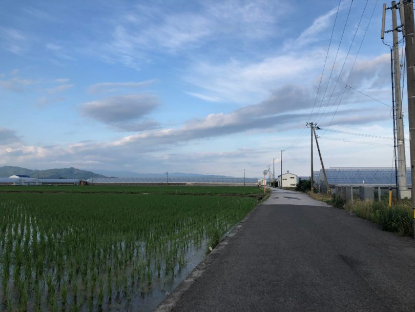 高知の田園風景