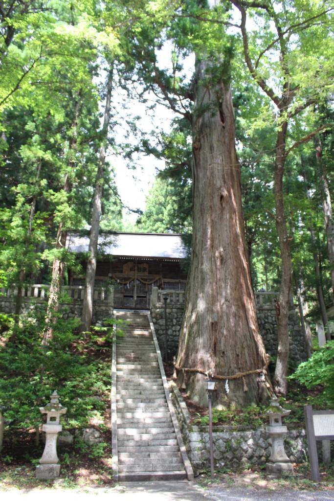細野諏訪神社 拝殿
