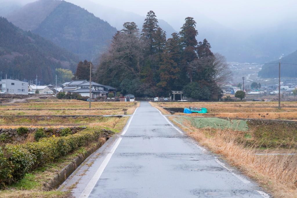 日本酒のふるさとコース_風景3