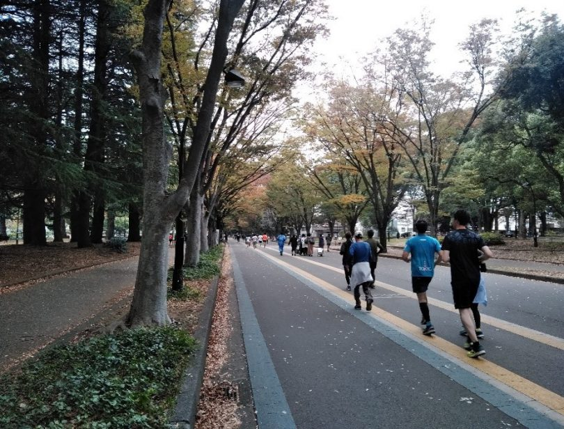 駒沢公園内サイクリングコース