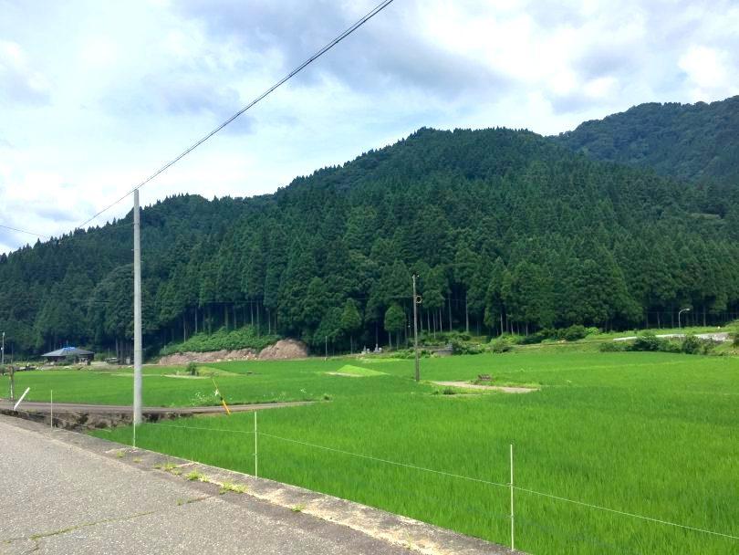 味見地区の田園風景
