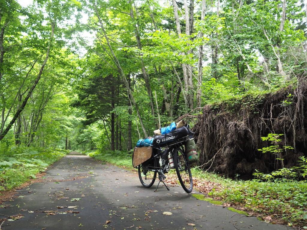 森と自転車