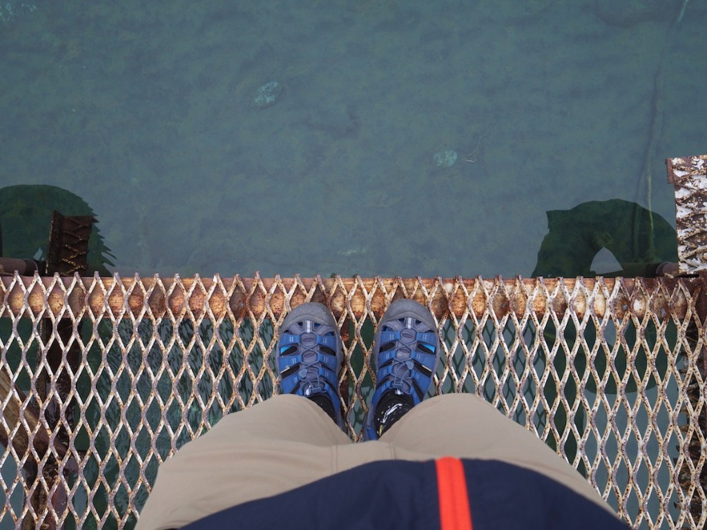 桟橋から海を眺める