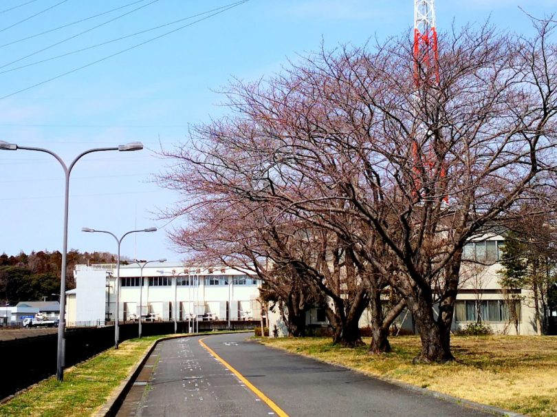 大和田機場