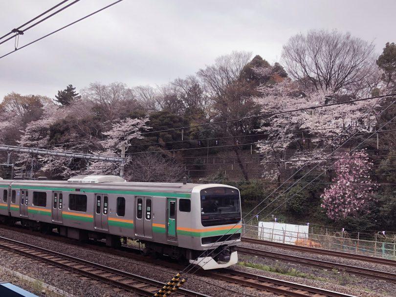 王子駅 常磐線 京浜東北線 東北新幹線