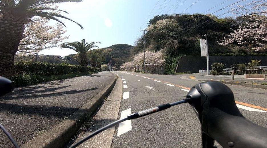 浦賀から久里浜へ続く道