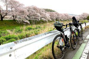 琵琶湖大橋→大阪(桜)