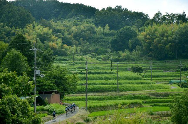 奈良県 サイクリング