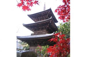 一乗寺-南部ぷちヒルクライム