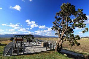 【あぜ道】慶子女王の墓