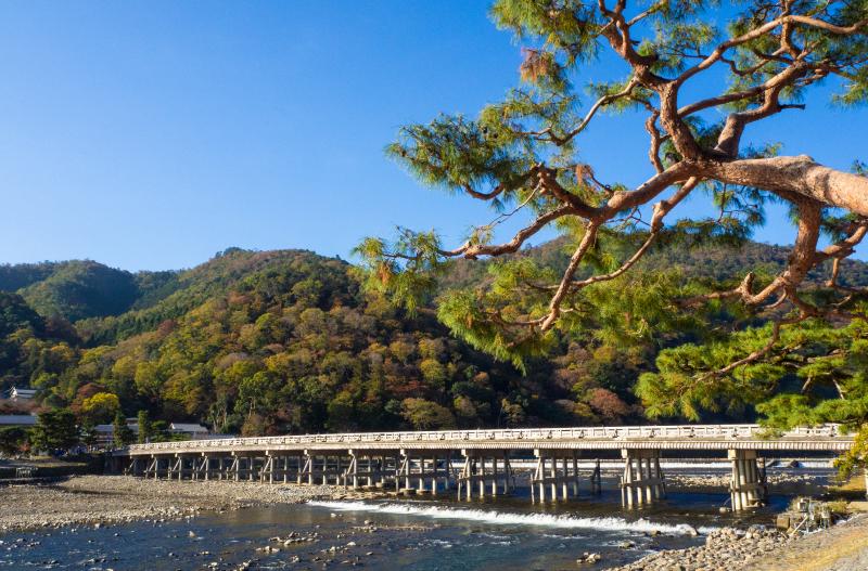 名勝 渡月橋