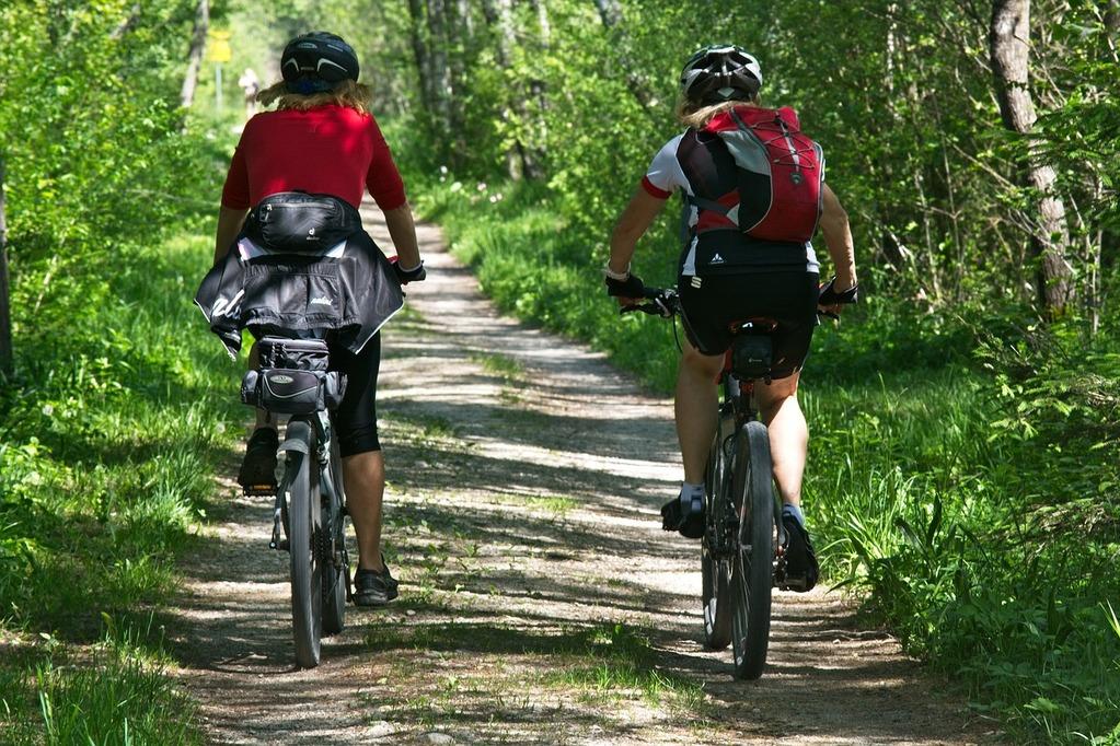 多摩湖自転車道のコース