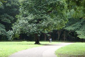 【関東版】子供と一緒にサイクリングが楽しめるコース・スポット10選!