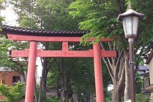 【埼玉県】日本一参道が長い大宮氷川神社 一の鳥居からサイクリング